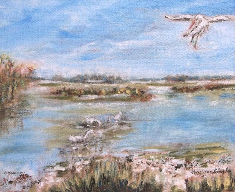 Artiste : BLACHE Christiane  /  Titre : camargue - zénith, quiétude dans les étangs