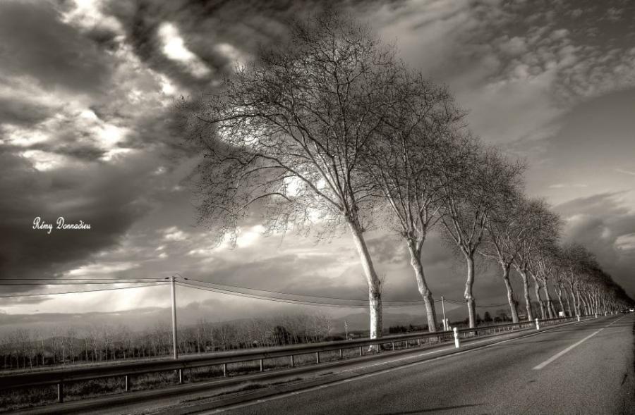 Artiste : DONNADIEU Rémy  /  Titre : Paysages de pays sages - Vers le Sud